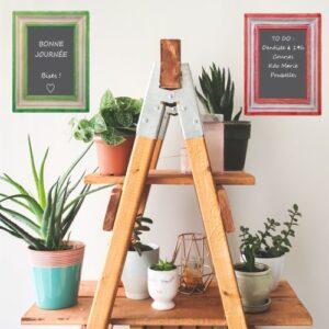 Jolie échelle pour plantes verte avec ardoises adhésive en forme de cadres déco vert et rouge.