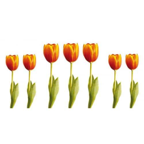 Autocollant de fleurs Tulipes Orange