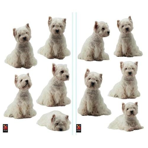 Sticker mural adhésifs chiens