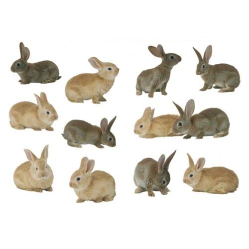 Sticker de petits lapins brun et gris