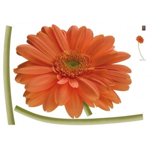 Sticker géant de fleur Gerbera Orangée