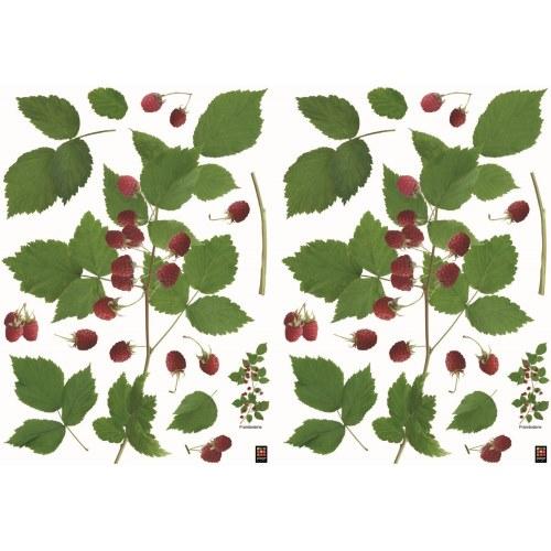 Ensemble de décoration murale adhésive pour cuisine ou salon avec branches de framboisier