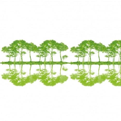 Sticker muraux Arbres Verts Reflétés