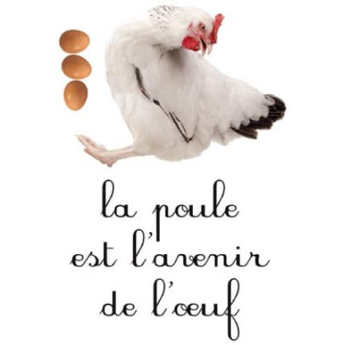 Sticker mural Poule Oeuf