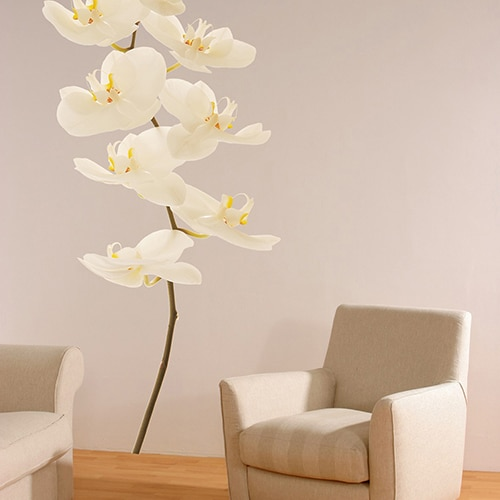 sticker mural orchidées blanche sur un mur clair