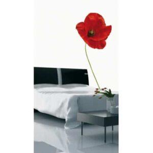 Sticker fleur Coquelicots dans une chambre