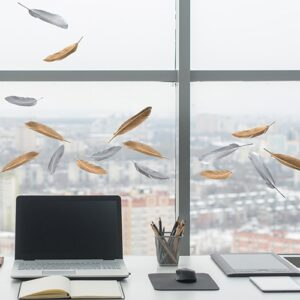 sticker déco de vitres Plumes d'oiseau sur une vitre - décorations électrostatiques