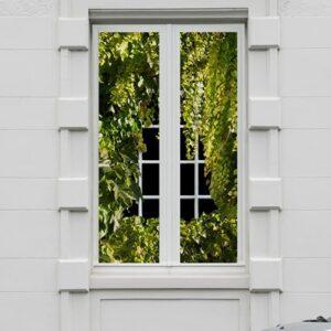 Sticker adhésif anti-regard Vigne vierge pour fenêtres