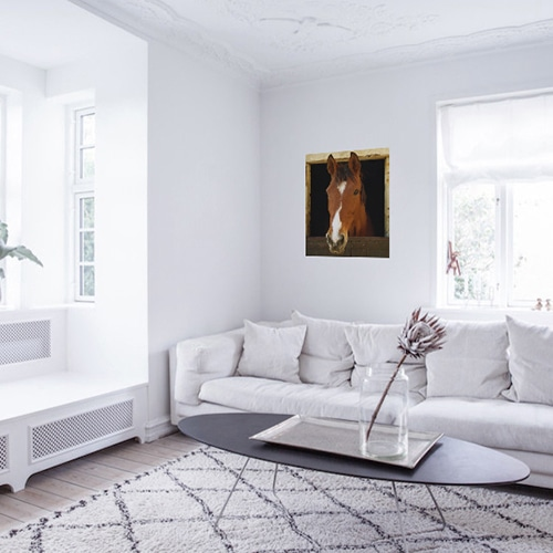 sticker Cheval et box dans un salon blanc