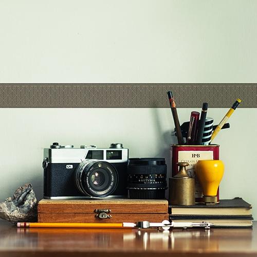 Sticker frise feuille bleue et grise sur mur clair déco photographe