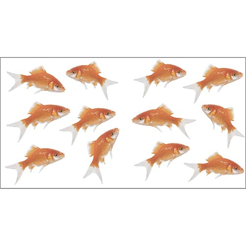 Stickers muraux Poissons rouges