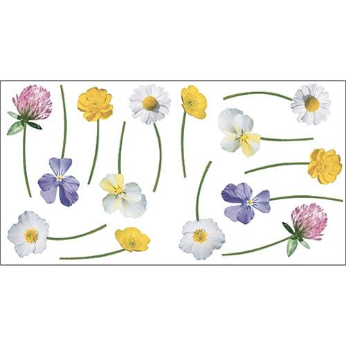 Stickers adhésifs fleurs des champs !