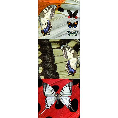 Sticker Planche de Papillons autocollante