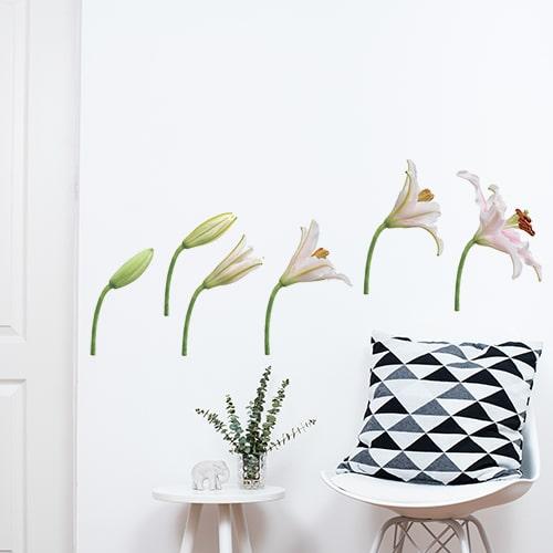 Stickers autocollants fleurs sur mur blanc