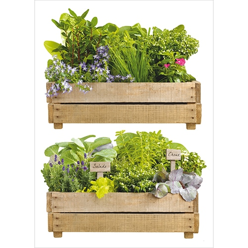 Lot de 2 Stickers Jardin Aromatique à coller au mur