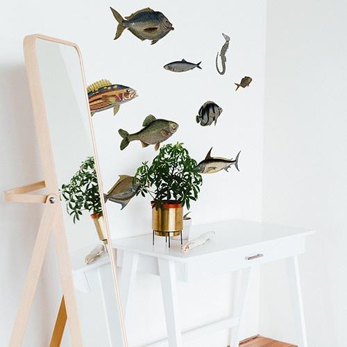 Stickers autocollants Poissons au-dessus d'une table avec plante décorative et miroir