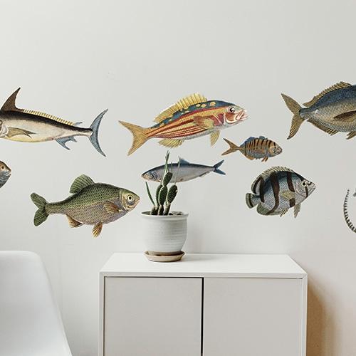 Sticker avec plusieurs poissons, maquereau, espadon dans un salon