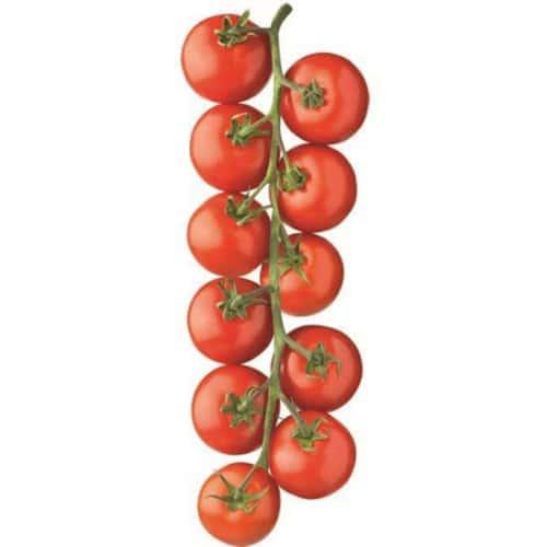 Sticker mural Tomates