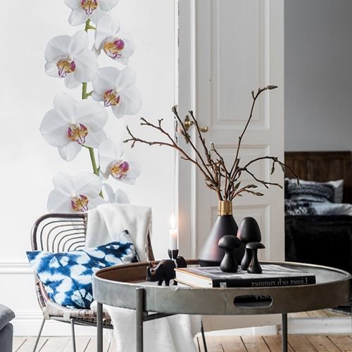 Orchidée à coller sur mur salon