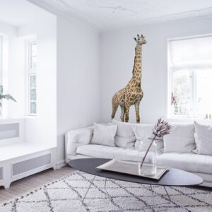 Sticker Mural Girafe autocollant dans un salon blanc