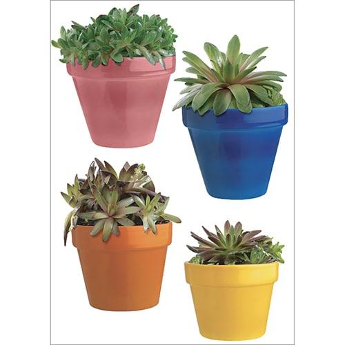 Sticker adhésif mural de pots de cactus