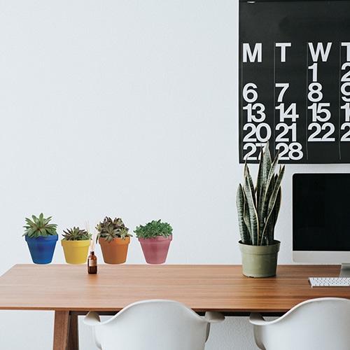 Stickers Cactus mis au mur d'un bureau d'adulte