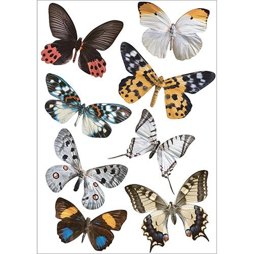 Planche d'autocollant de 8 papillons à coller
