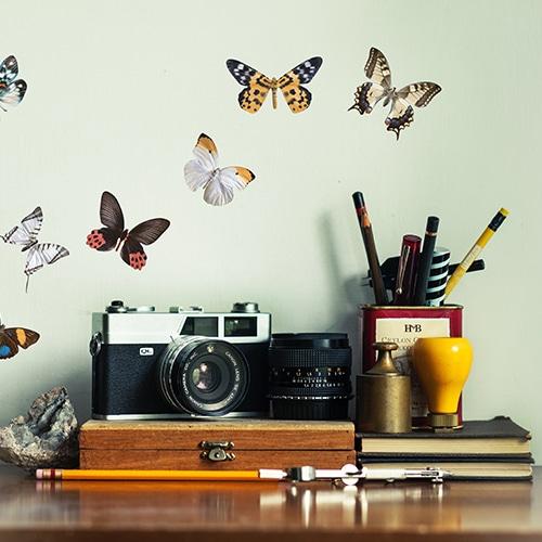 Stickers 8 papillons déco collé sur un mur dans un style photographe
