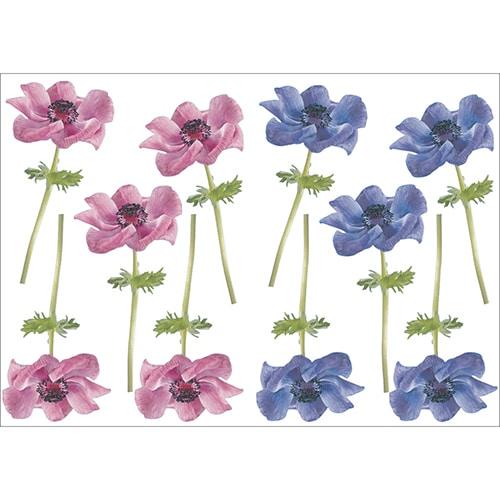 Lot de 10 Sticker Petites Anémones rose et bleue