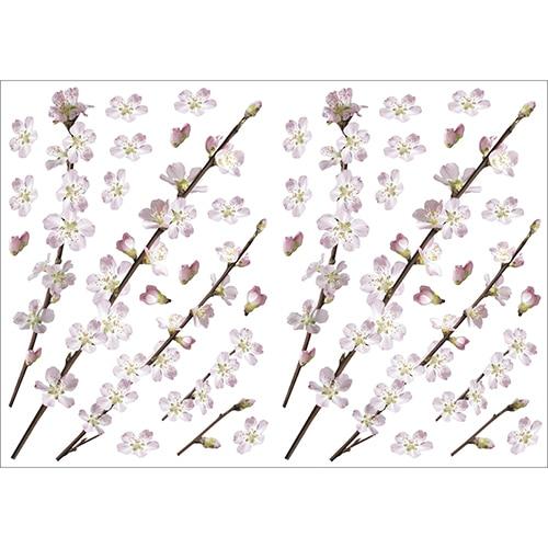 Lot de stickers Branches d'arbres en fleurs prêt à coller au mur