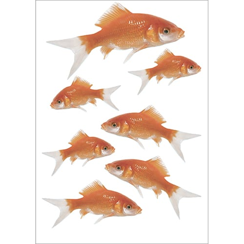 Lot de 7 Stickers poissons rouges