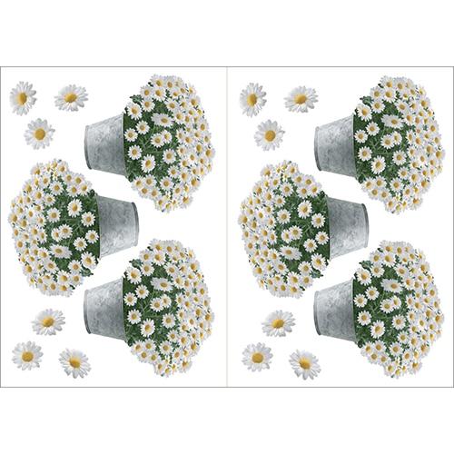 Lot de 6 stickers de fleurs pots de Paquerettes à coller au mur