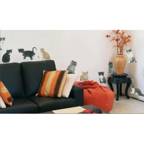 Set de 10 stickers chats mis dans un mur de salpon
