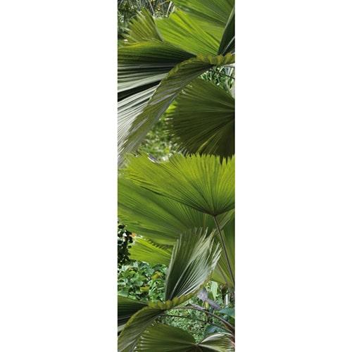 Sticker adhésifs pour électroménager Feuilles Tropicales