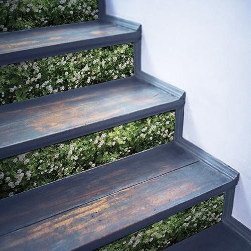 Sticker adhésif Mur Végétal pour contremarches d'escalier