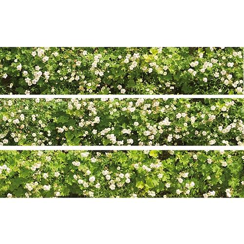 Sticker Mur Végétal pour contremarches d'escalier en bois gris
