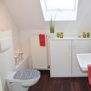 Sticker adhésif Argot pour décorer vos WC