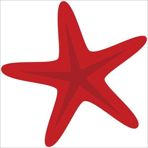 Sticker adhésif étoile de mer pour votre enfant