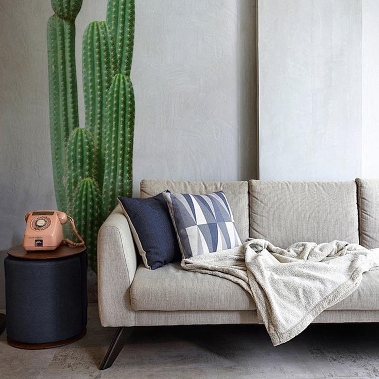 sticker cactus sur un mur peinture claire