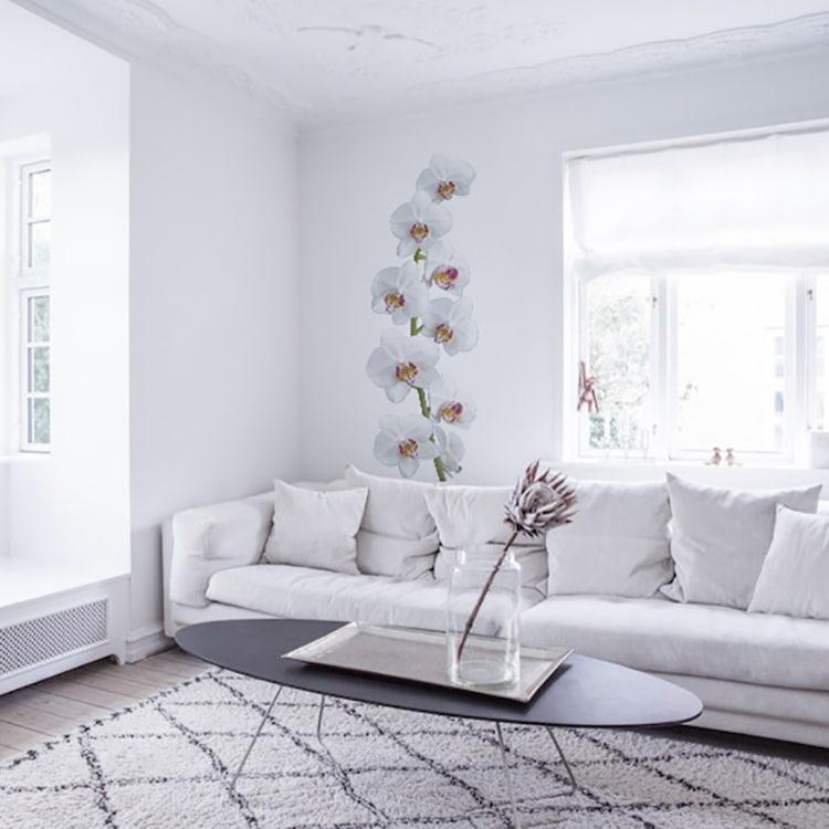 sticker orchidées blanches sur mur blanc