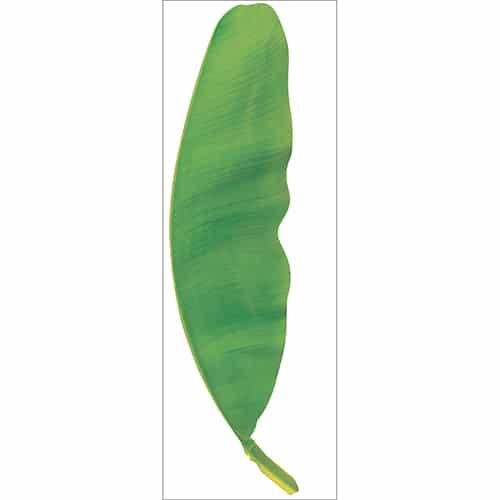 Sticker mural feuille de bananier verte