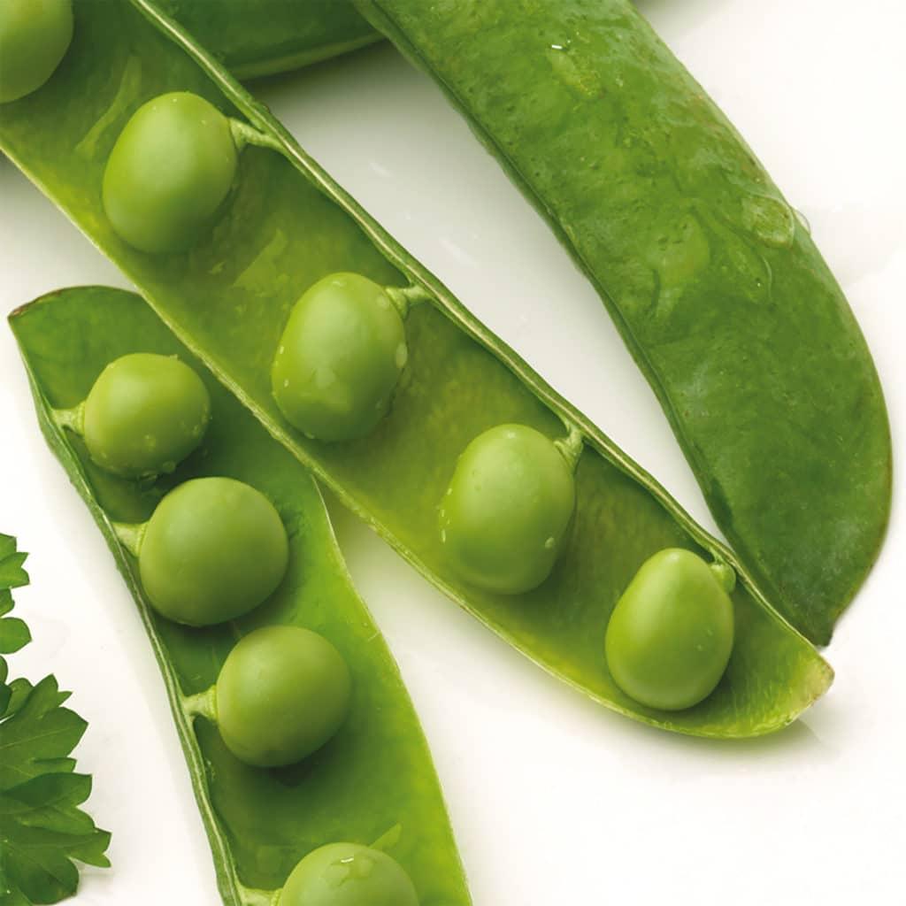 Stickers adhésif Légumes verts décoration d'intérieur pour carrelage