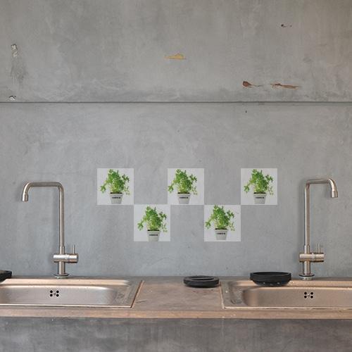 Adhésif déco Aromatique pour intérieur carrelage en béton gris de cuisine