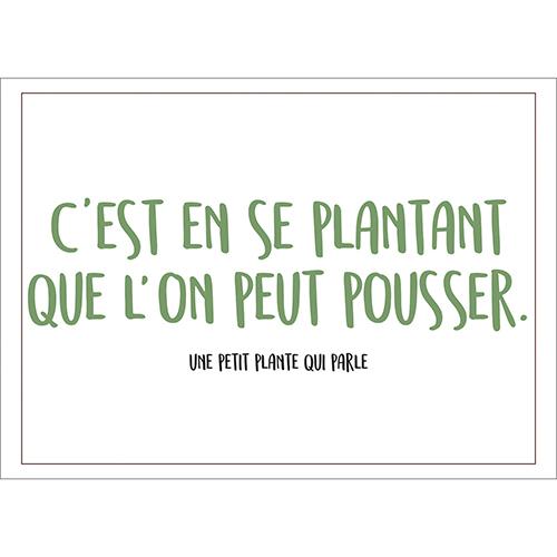 Sticker autocollant citation humoristique plante pour décoration intérieur de maison