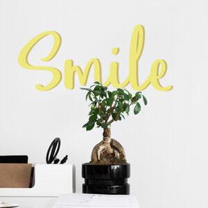 Sticker mural Smile vert derrière une plante dans un salon
