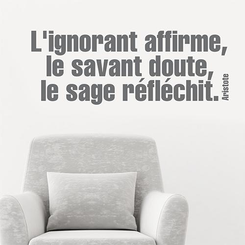 Salon moderne décoré avec un sticker citation philo l'ignorant affirme