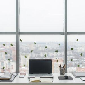 21 Stickers électrostatiques herbier feuilles vertes collés sur la baie vitrée d'un bureau