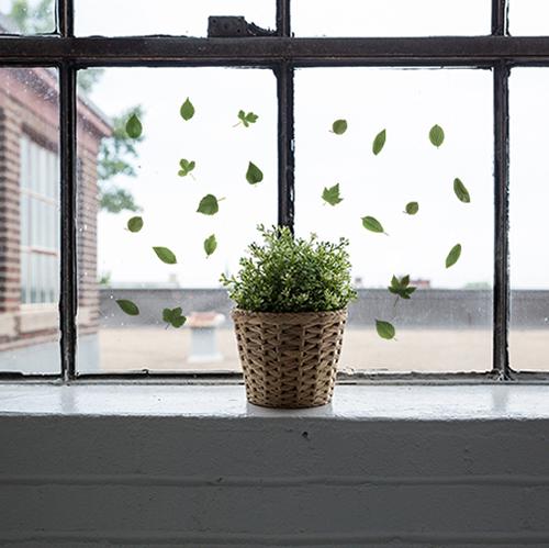 Stickers élctrostatiques pour vitres et fenêtres herbier feuilles vertes sur une fenêtre vintage