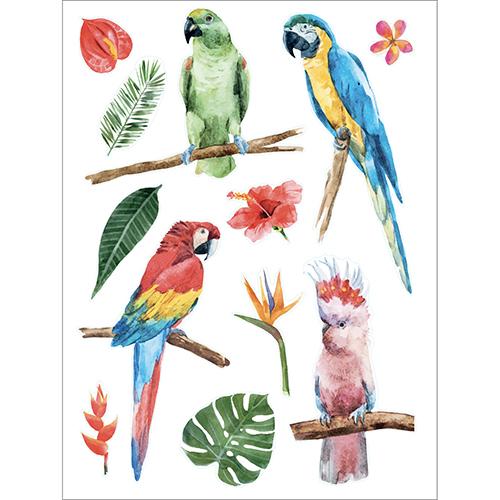 Sticker déco pour vitres et fenêtres Oiseaux exotiques perroquets de couleurs