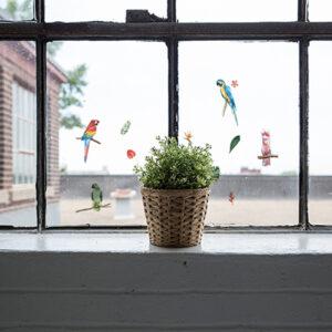 Stickers électrostatiques oiseaux exotiques perroquets collés sur une fenêtre vintage